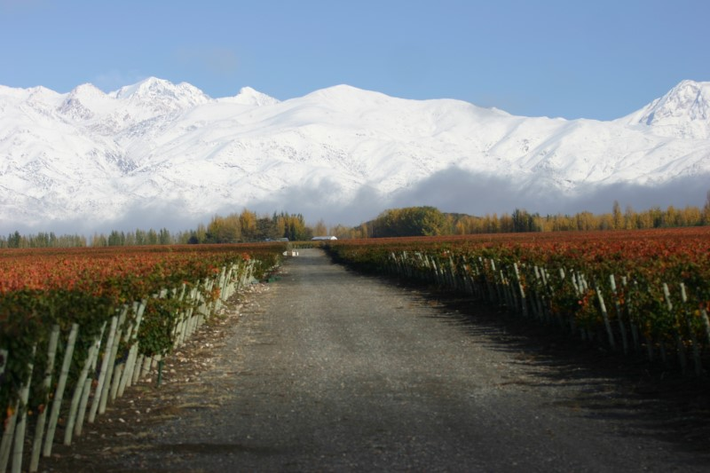 Catena: Andes Mountains