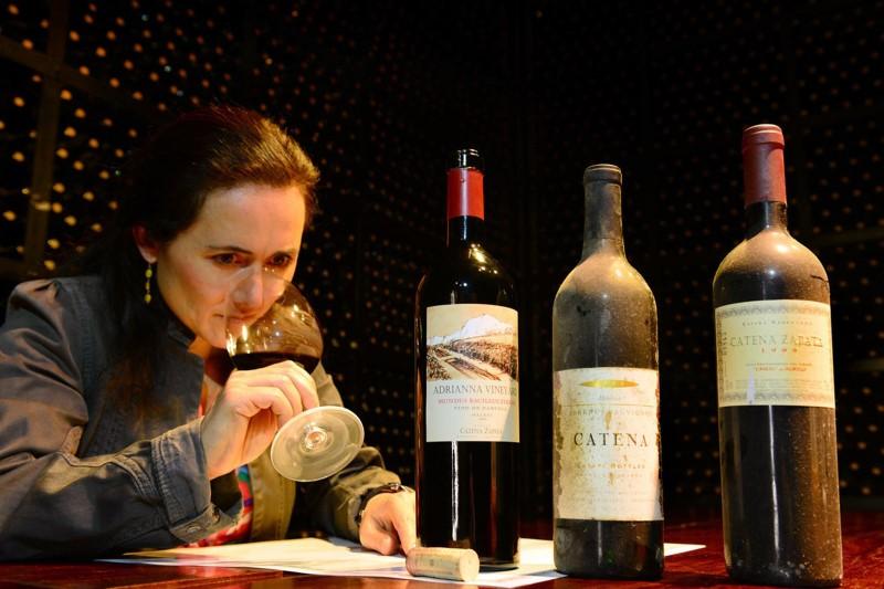 Winemaking: Wine Tasting