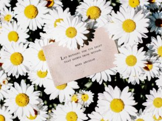 Maya Angelou: Quote with Daisies