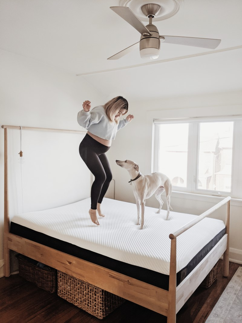 Woman Jumping on Apollo bed with Dog